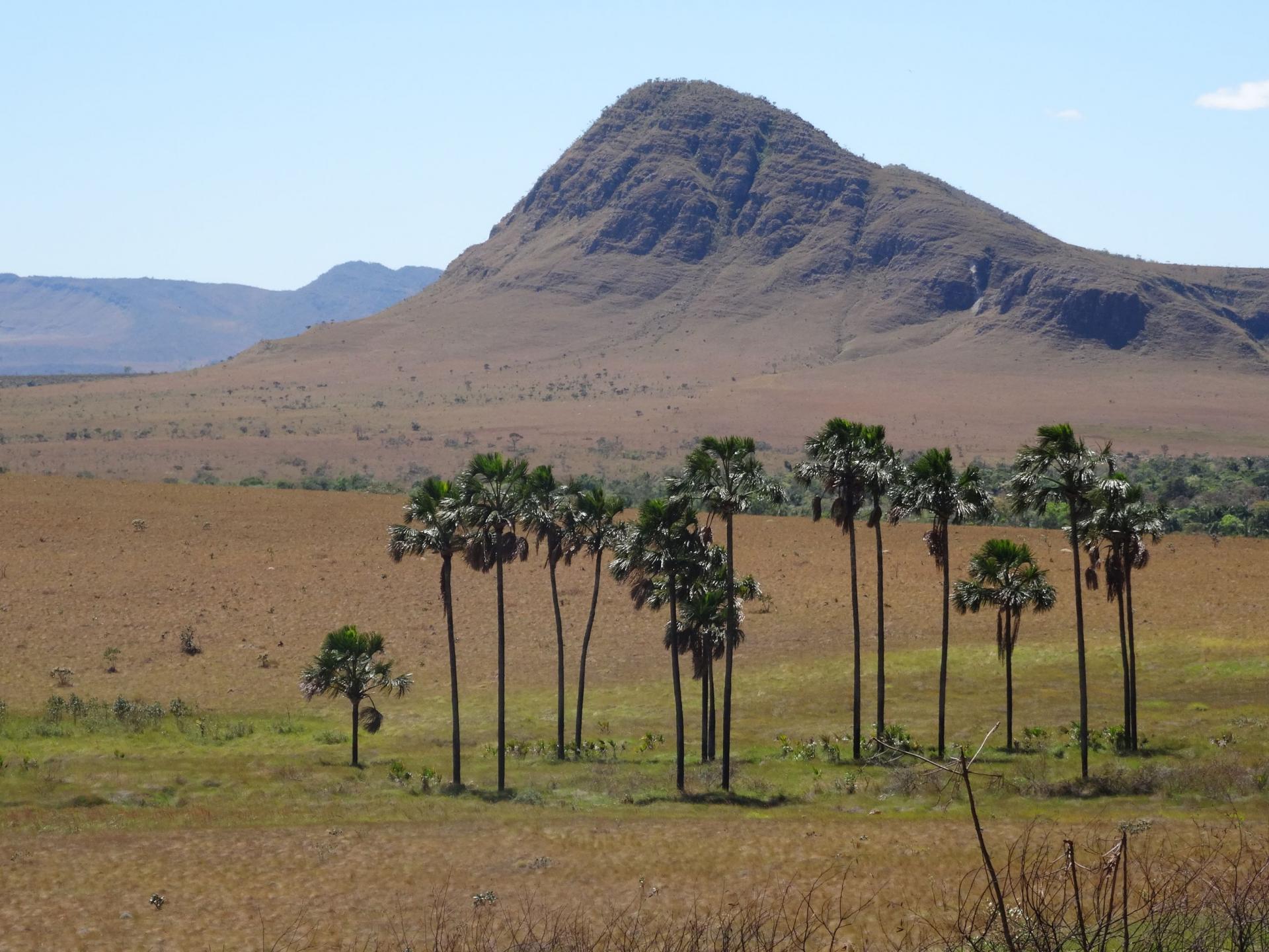 The breathtaking landscape of Chapada dos Veadeiros