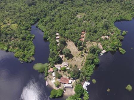 Amazon Turtle Lodge: pier