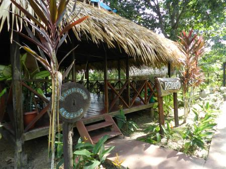Amazon Turtle Lodge: guests walking