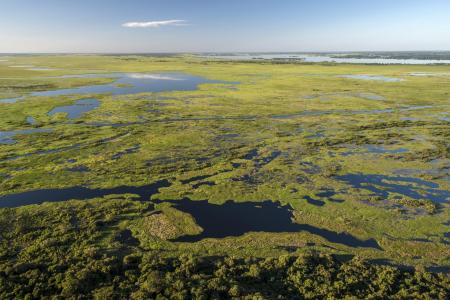 Aerial view of one of the biggest wetlands of the world, the Pantanal