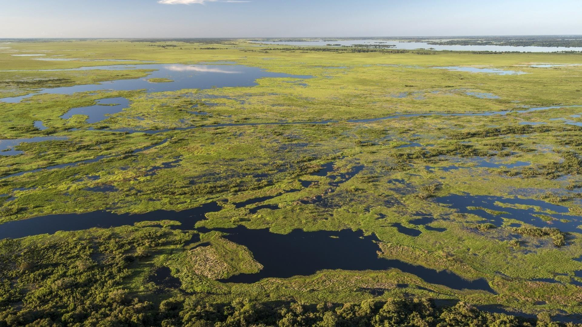 Aerial view of the Wetlands near to Pousada Piuval, Brazil - North Pantanal