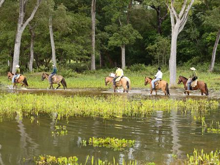 Horseback Riding at the wetlands near to Pousada Piuval