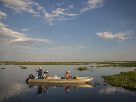 Boat Excursion in the North Pantanal
