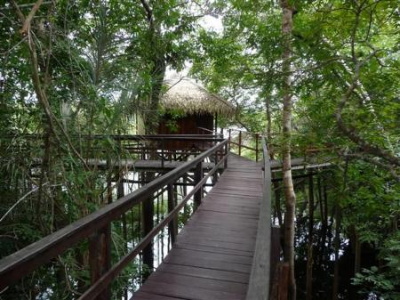 Amazon Juma Lodge: Pier over the water between the rooms and the restaurant