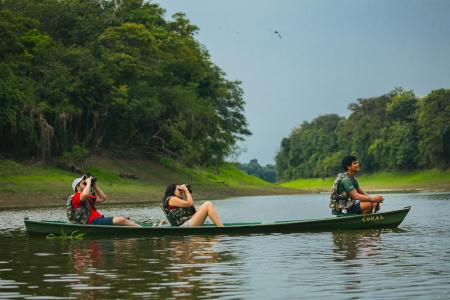 One guide and two visitors watching wildlife in a canoe