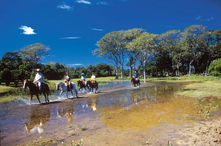 A unique adventure, an excursion through the wetlands of the Pantanal on a horse back