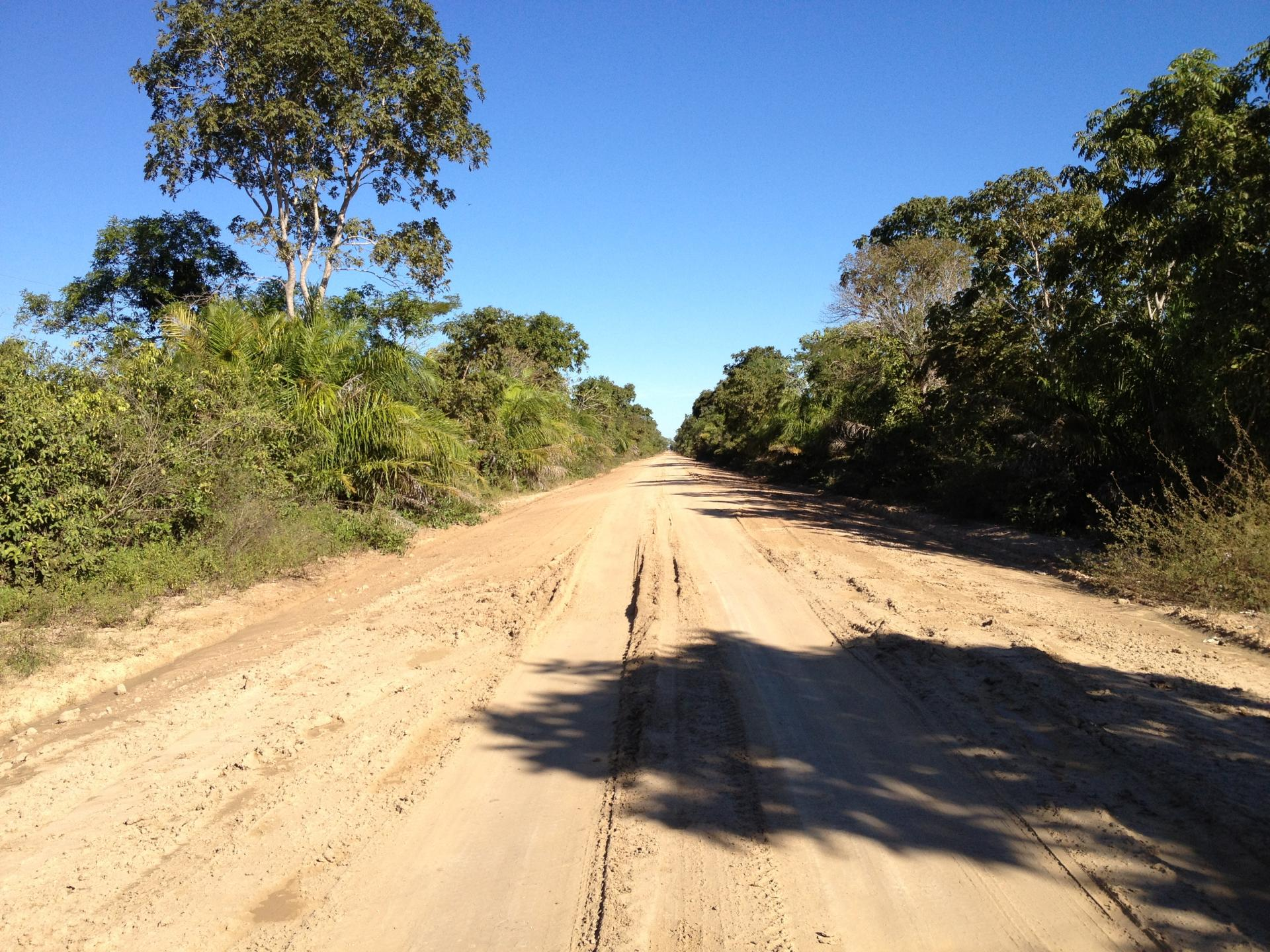Road Trip South Pantanal