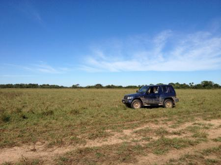 Rental cars in the South Pantanal